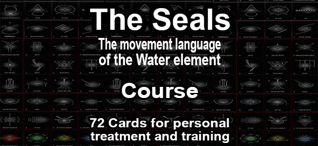The seal cards course